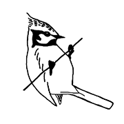 Meisengezwitscher - Naturblog