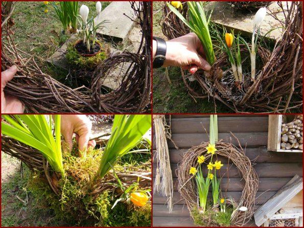 Deko mit Blumenzwiebeln, Türkranz, Dekorieren mit Zwiebelpflanzen, Kranz aus Wilder Wein, Frühlingsfloristik
