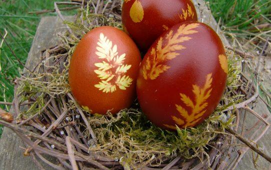 Kräutereier: Natürlich schön zu Ostern