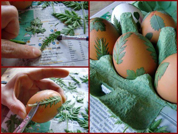 Kräutereier, Ostereier mit Kräutern verzieren